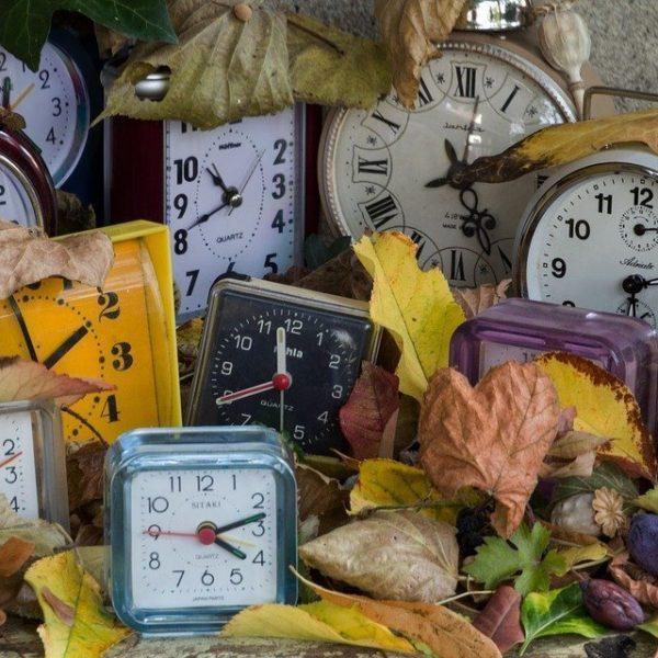 Varios relojes tipo alarma despertador